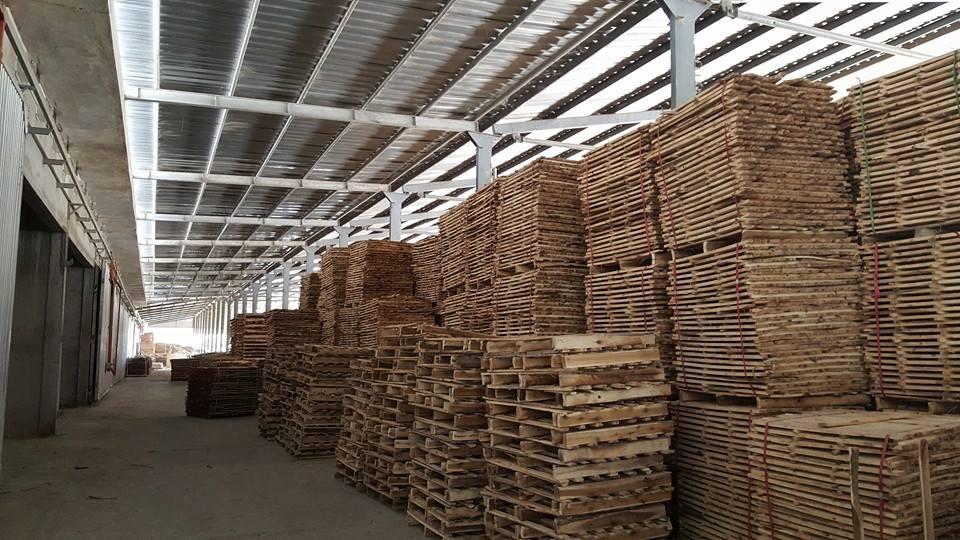 Xuất khẩu gỗ trong năm 2015: Nhiều dấu hiệu lạc quan
